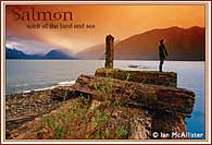 http://www.oneworldjourneys.com/images/ecards/salmon_sea_card_middle.jpg